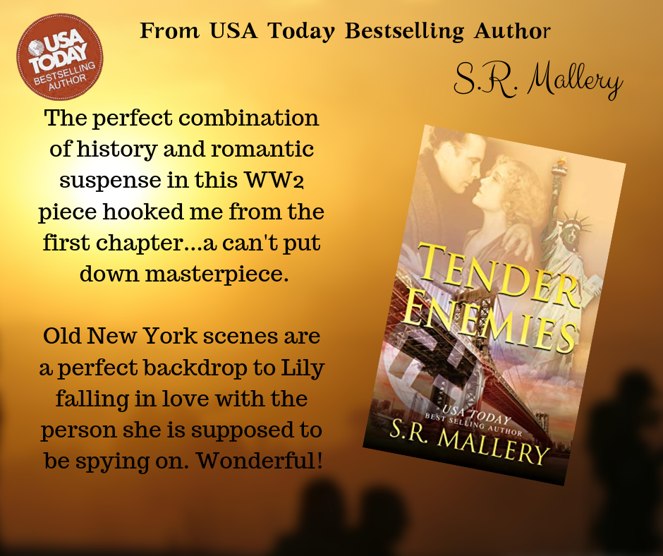 Tender Enemies by S.R. Mallery